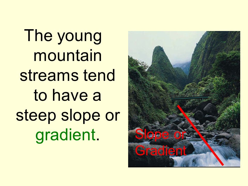 The young mountain streams tend to have a steep slope or gradient.