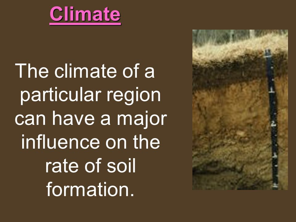 Climate The climate of a particular region can have a major influence on the rate of soil formation.