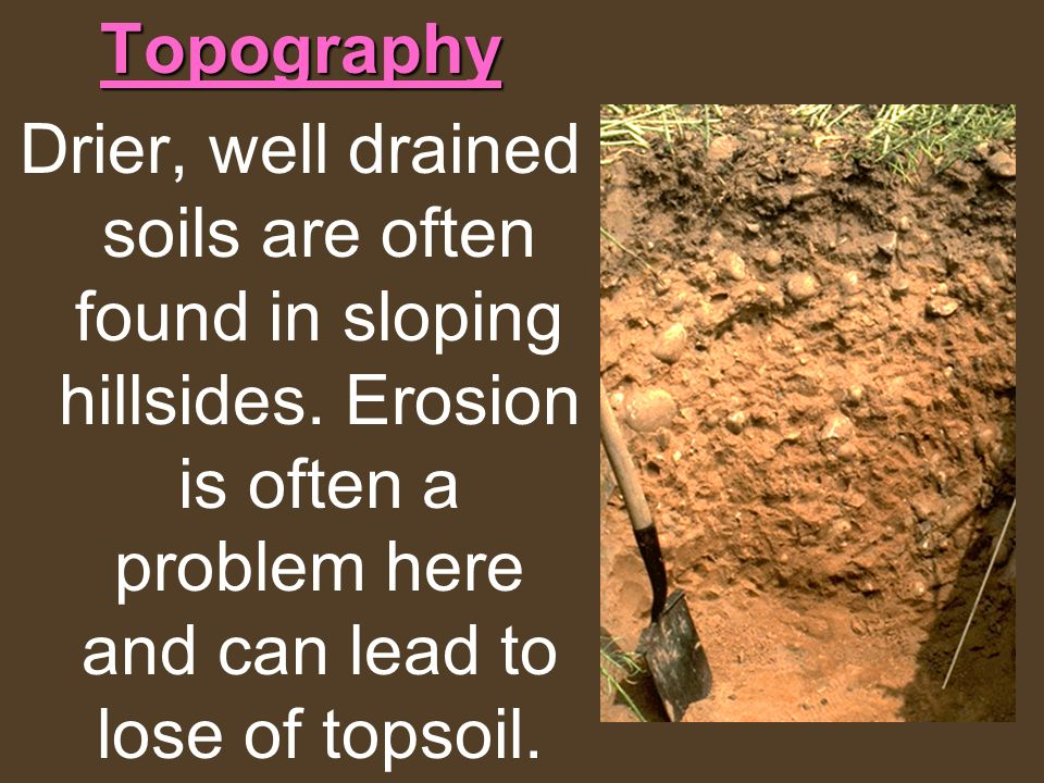 Topography Drier, well drained soils are often found in sloping hillsides.