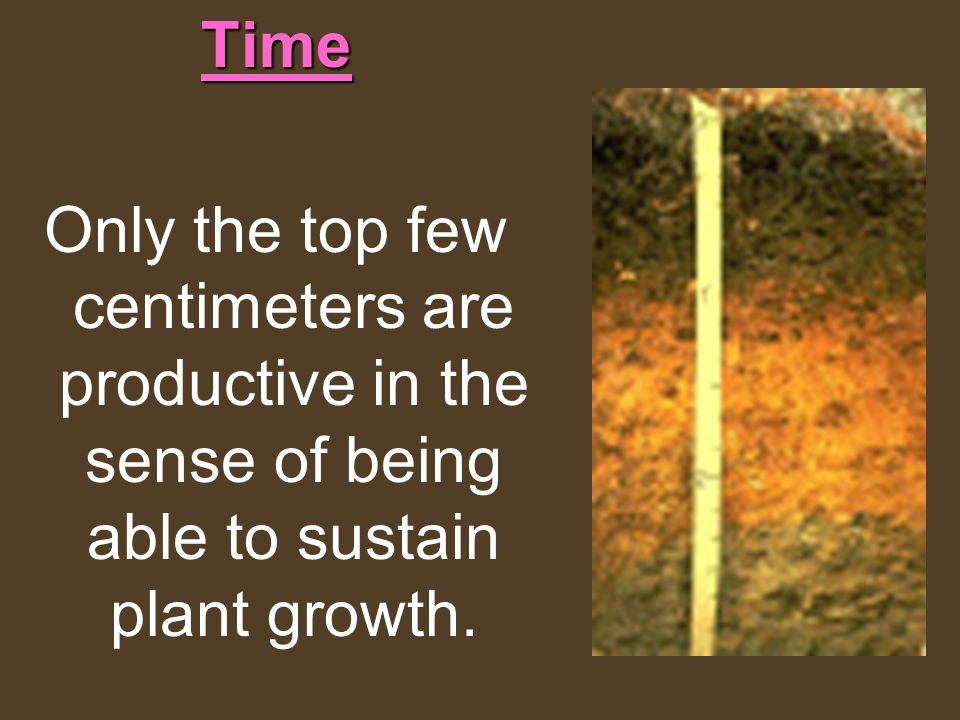 Time Only the top few centimeters are productive in the sense of being able to sustain plant growth.