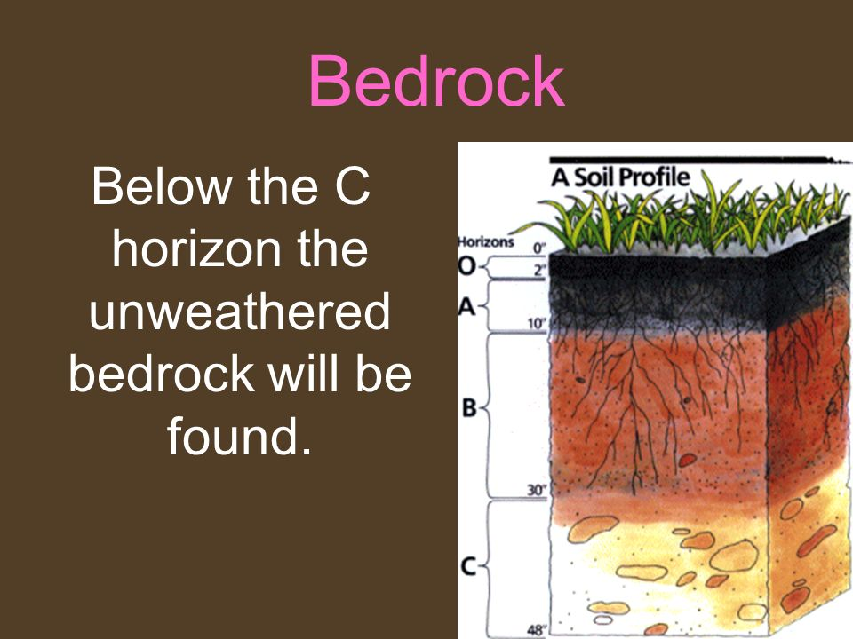 Below the C horizon the unweathered bedrock will be found.