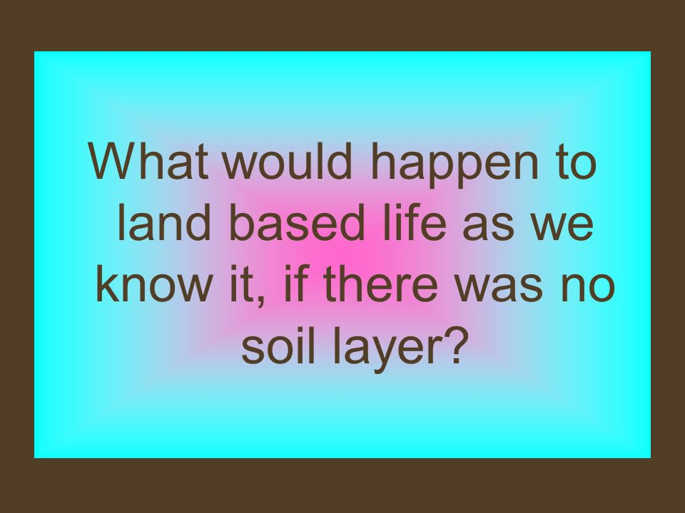What would happen to land based life as we know it, if there was no soil layer