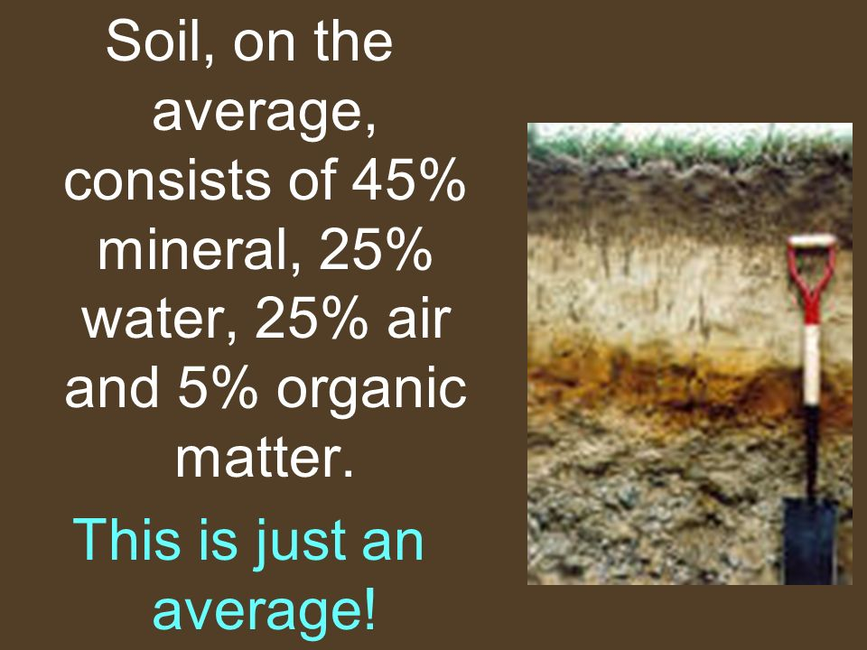 Soil, on the average, consists of 45% mineral, 25% water, 25% air and 5% organic matter.