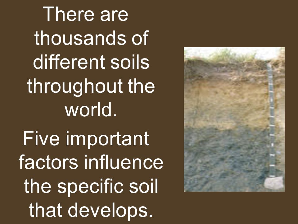 There are thousands of different soils throughout the world.