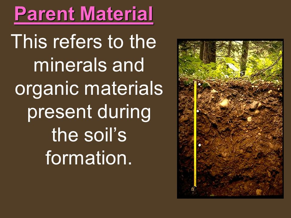Parent Material This refers to the minerals and organic materials present during the soil's formation.