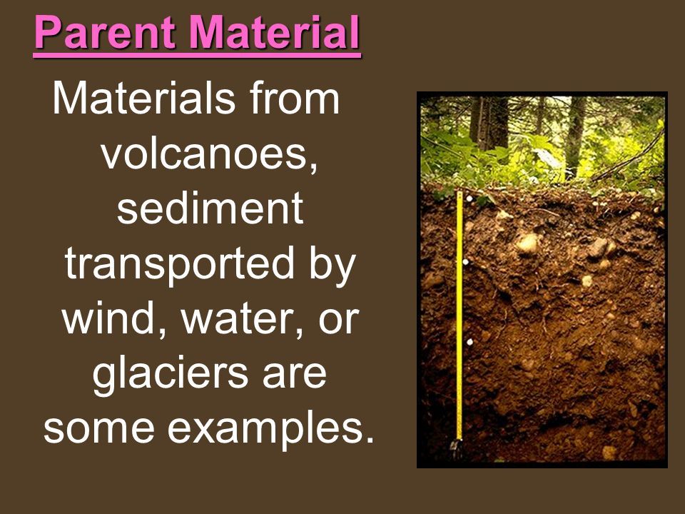 Parent Material Materials from volcanoes, sediment transported by wind, water, or glaciers are some examples.