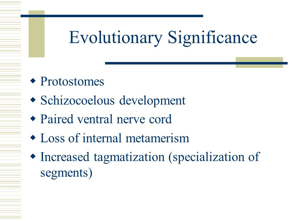 Evolutionary Significance