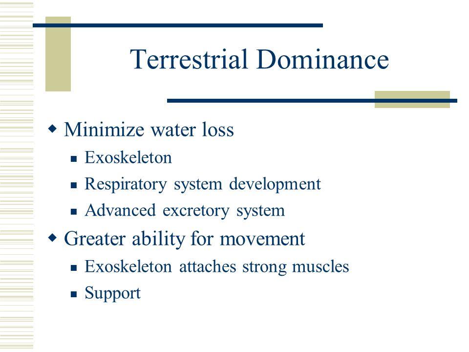 Terrestrial Dominance