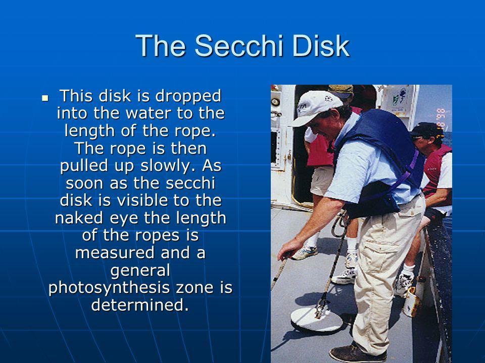 The Secchi Disk