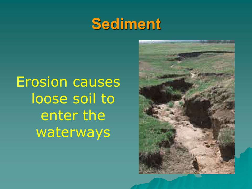 Erosion causes loose soil to enter the waterways