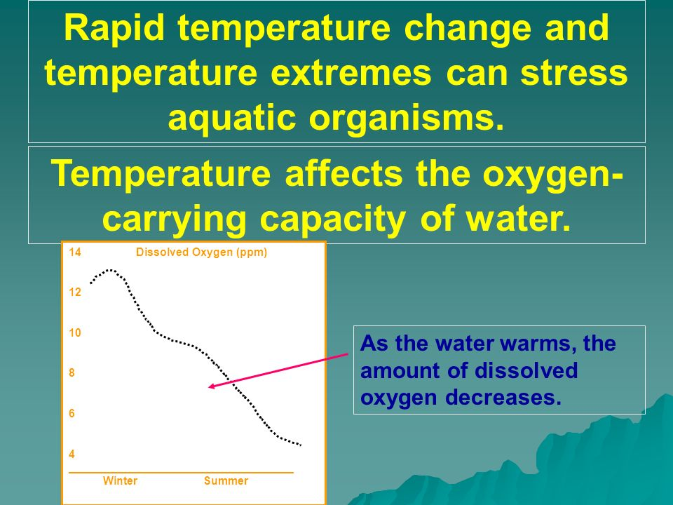 Temperature affects the oxygen-carrying capacity of water.