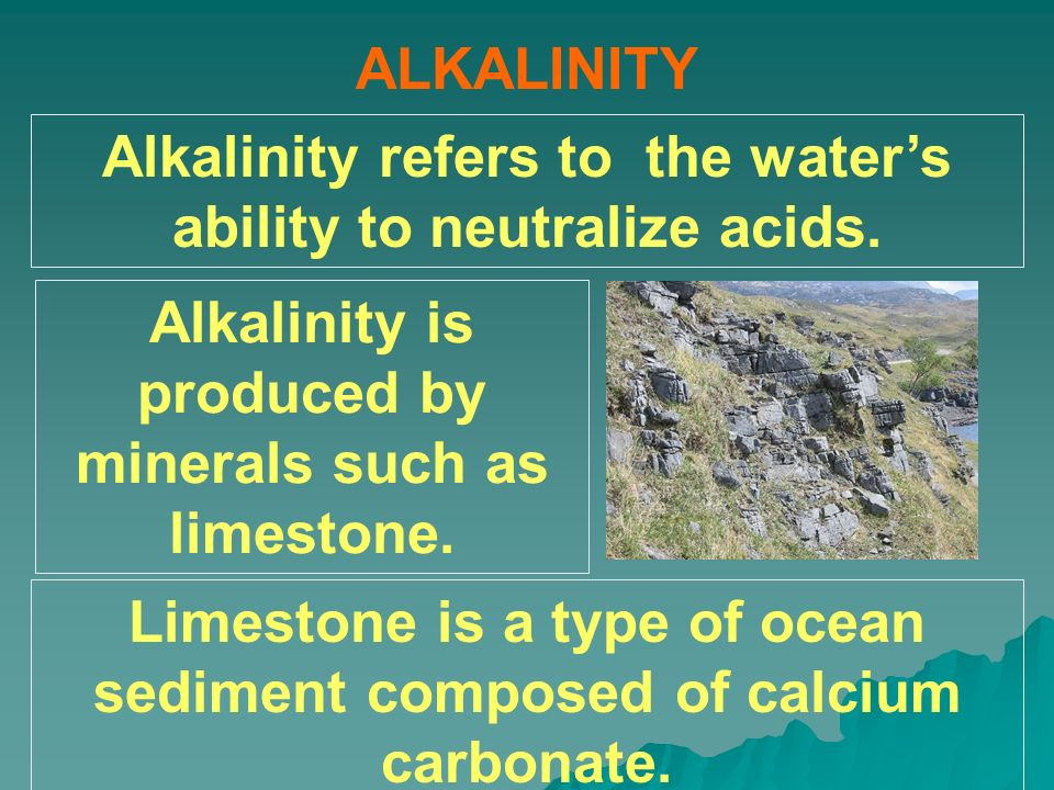 Alkalinity refers to the water's ability to neutralize acids.
