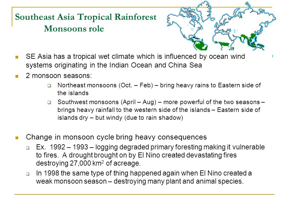 Southeast Asia Tropical Rainforest Monsoons role