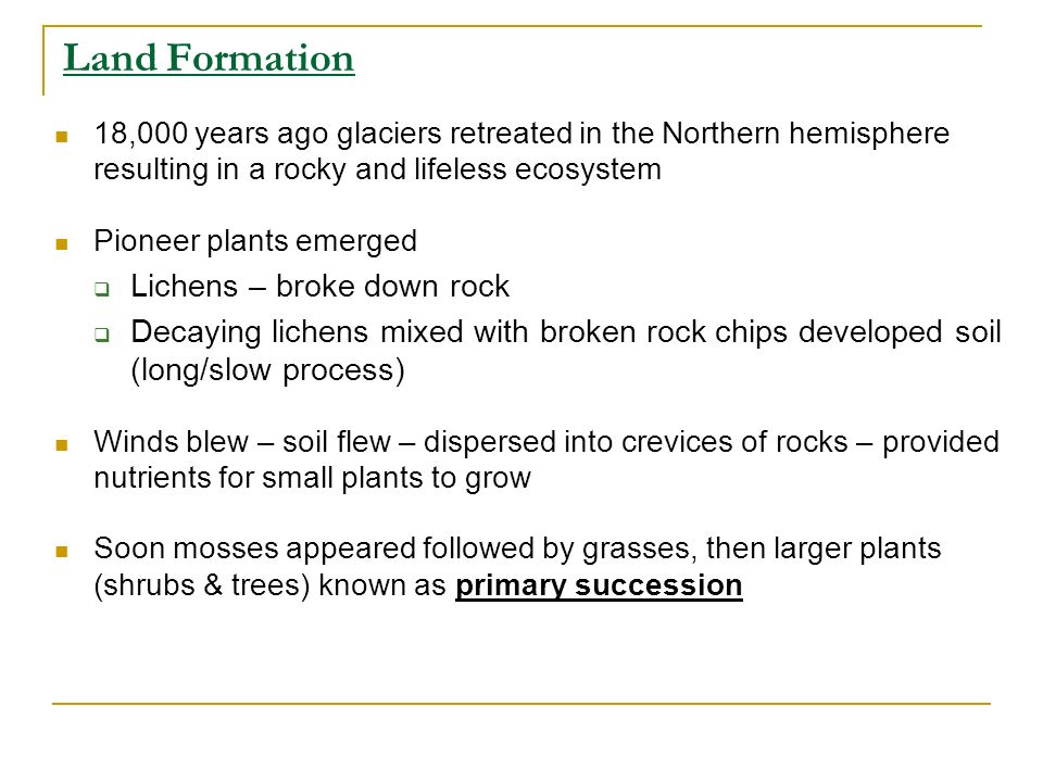 Land Formation Lichens – broke down rock
