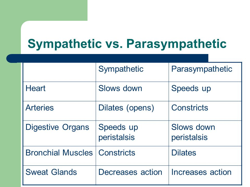 Sympathetic vs. Parasympathetic