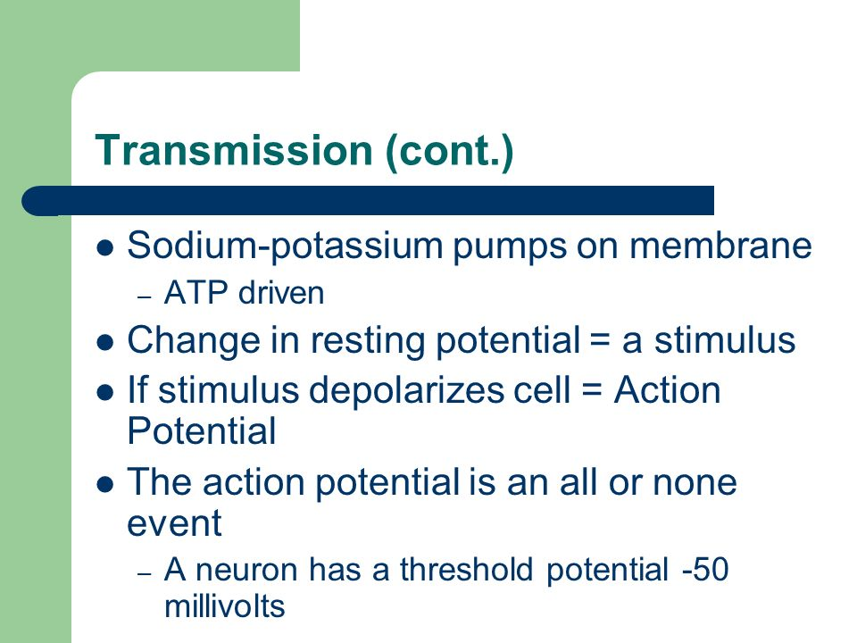 Transmission (cont.) Sodium-potassium pumps on membrane