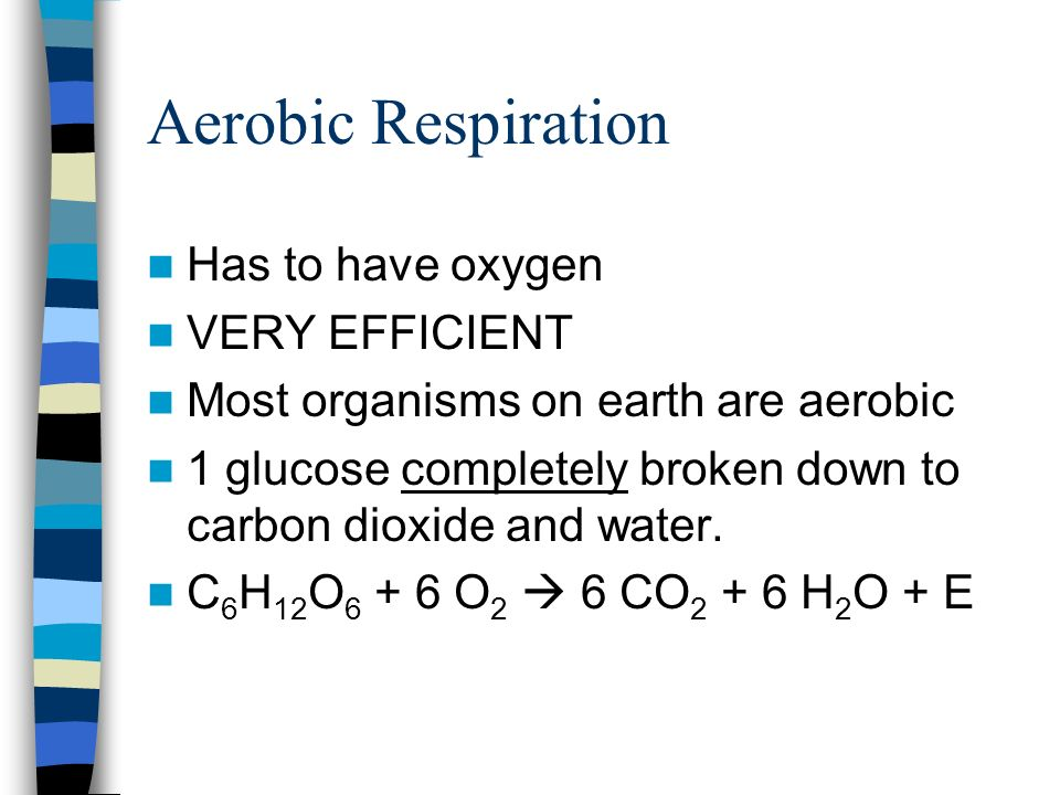 Aerobic Respiration Has to have oxygen VERY EFFICIENT