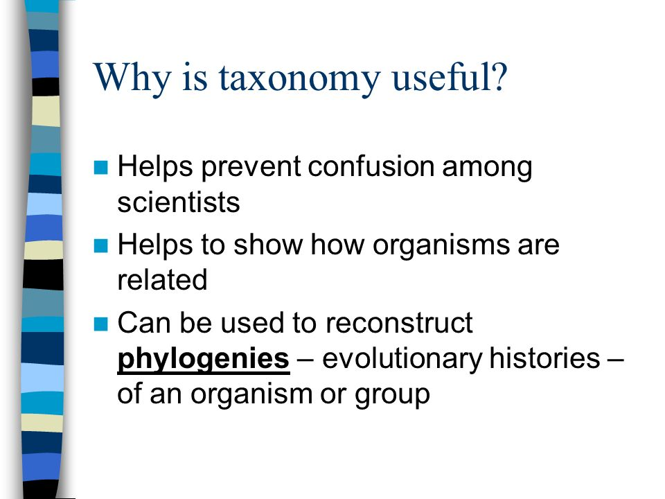 Why is taxonomy useful Helps prevent confusion among scientists