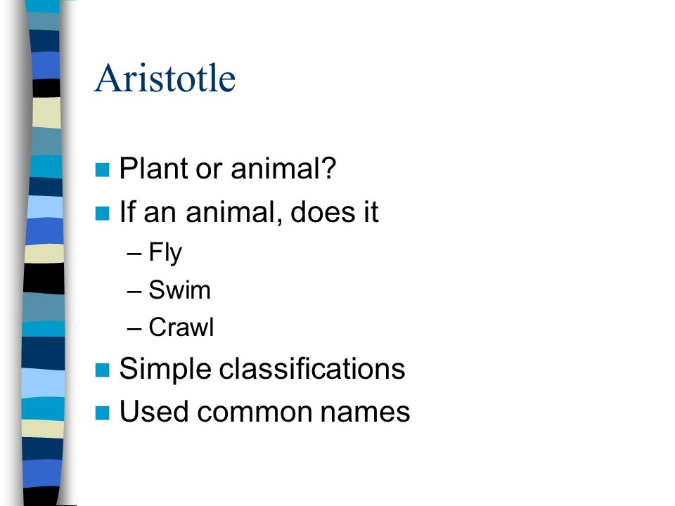 Aristotle Plant or animal If an animal, does it