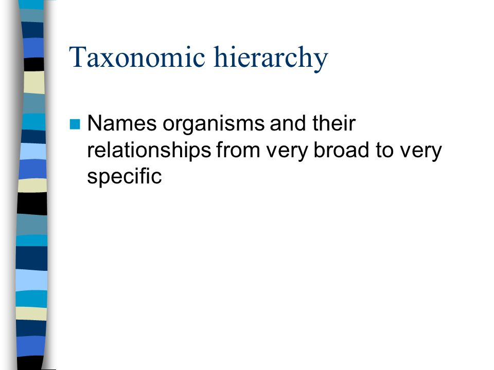 Taxonomic hierarchy Names organisms and their relationships from very broad to very specific