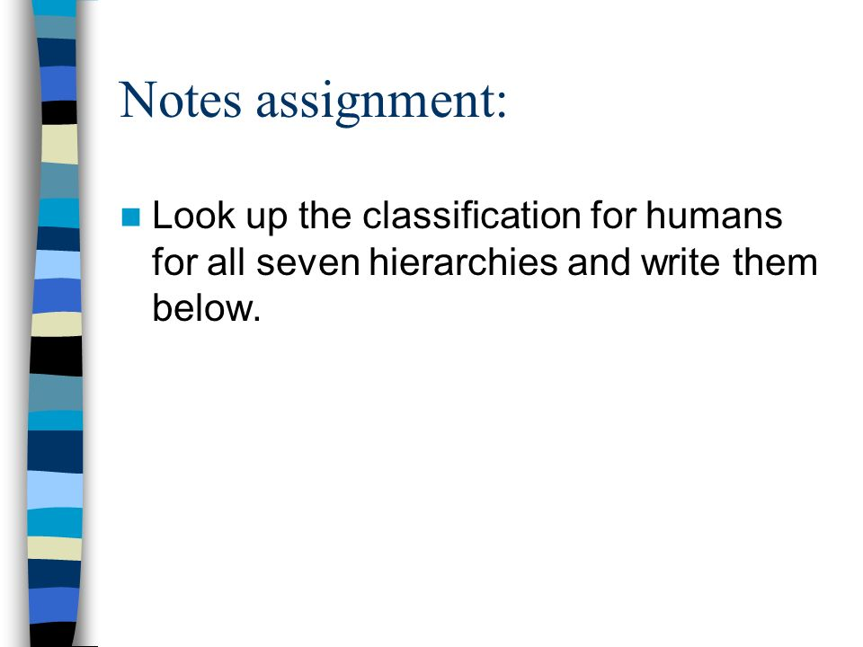 Notes assignment: Look up the classification for humans for all seven hierarchies and write them below.