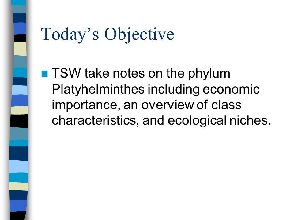 economic importance of platyhelminthes pdf