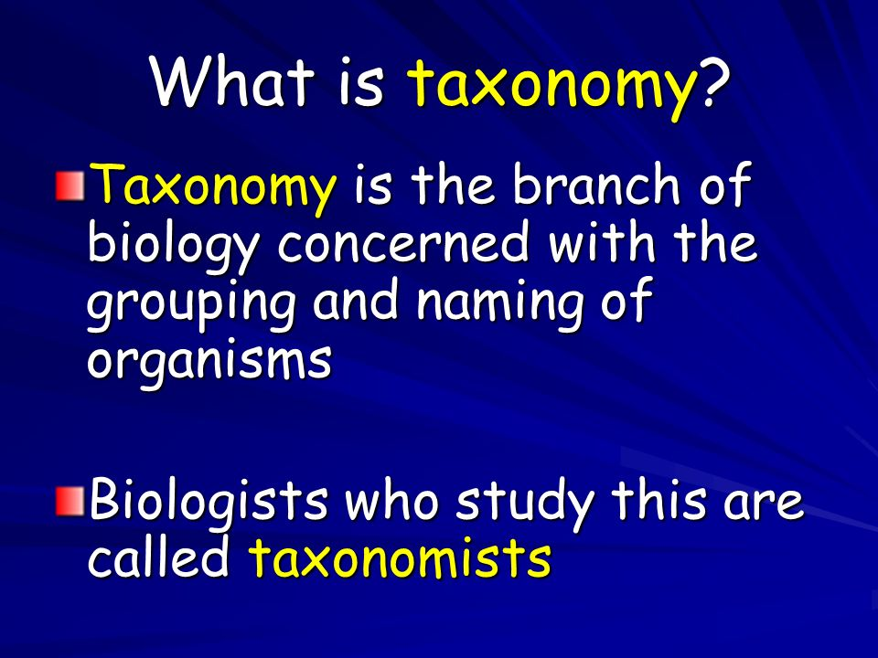 What is taxonomy Taxonomy is the branch of biology concerned with the grouping and naming of organisms.