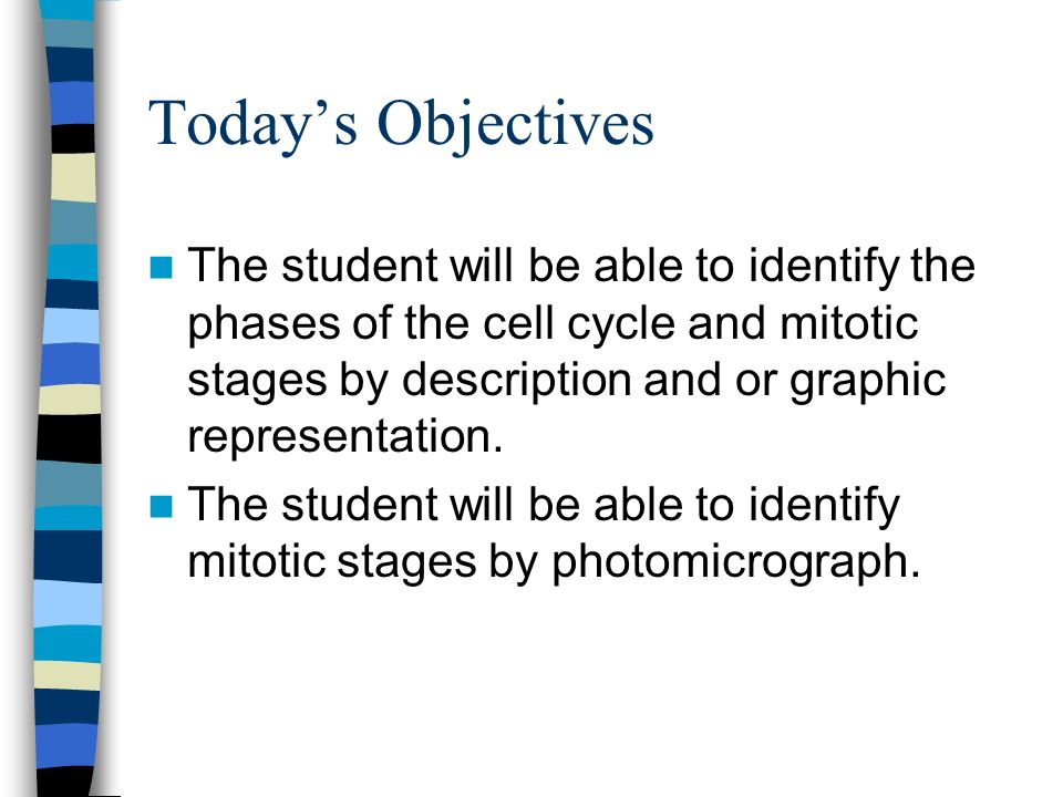 Today's Objectives The student will be able to identify the phases of the cell cycle and mitotic stages by description and or graphic representation.