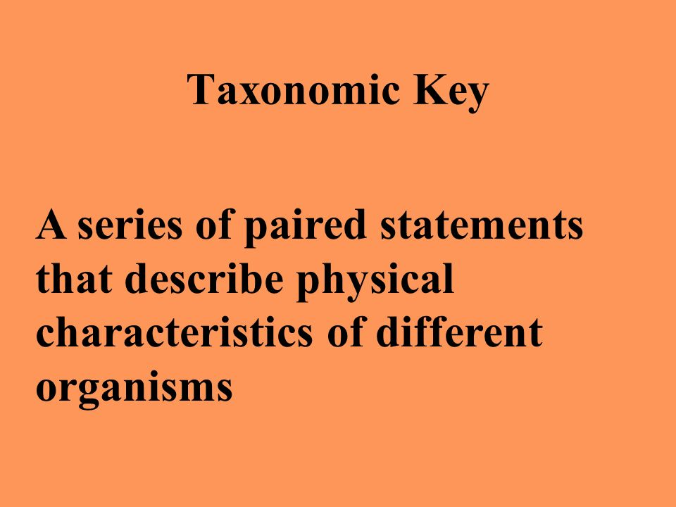 Taxonomic Key A series of paired statements that describe physical characteristics of different organisms.