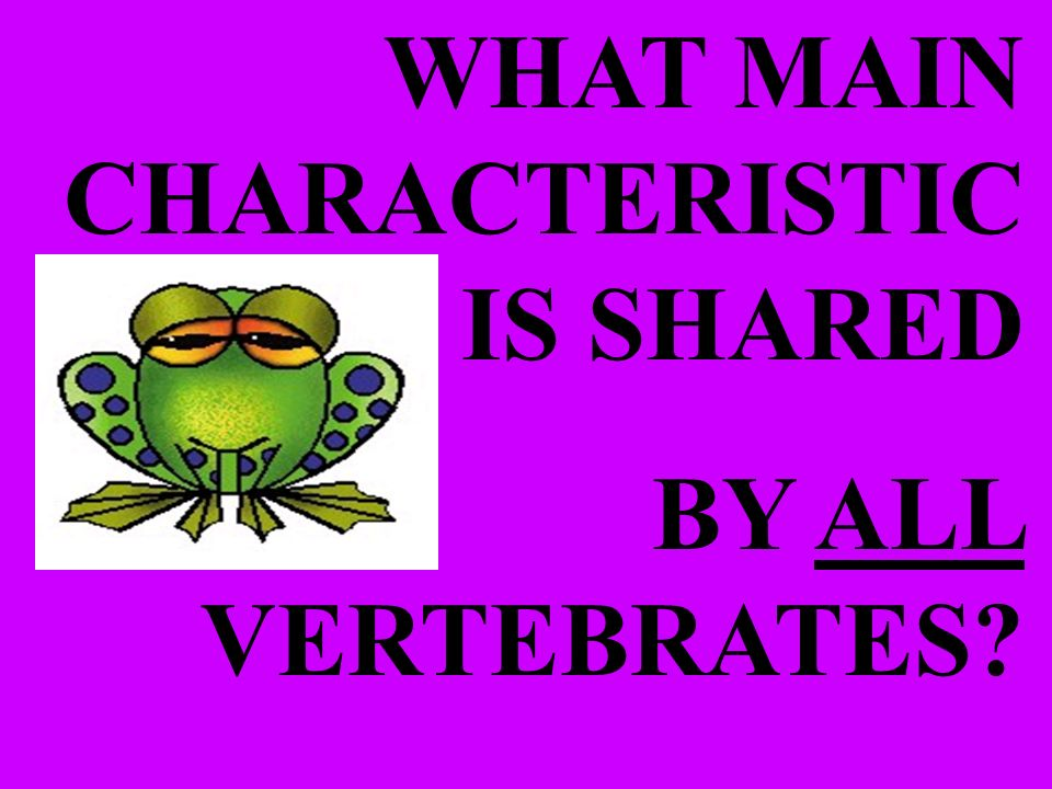 WHAT MAIN CHARACTERISTIC IS SHARED