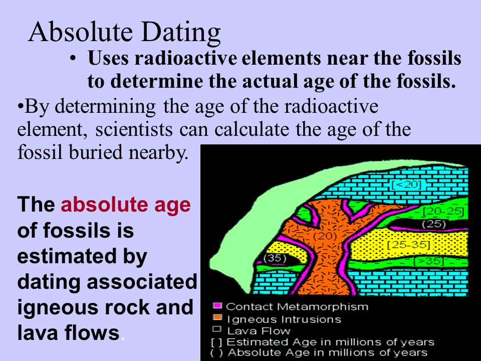 Absolute Dating Uses radioactive elements near the fossils to determine the actual age of the fossils.