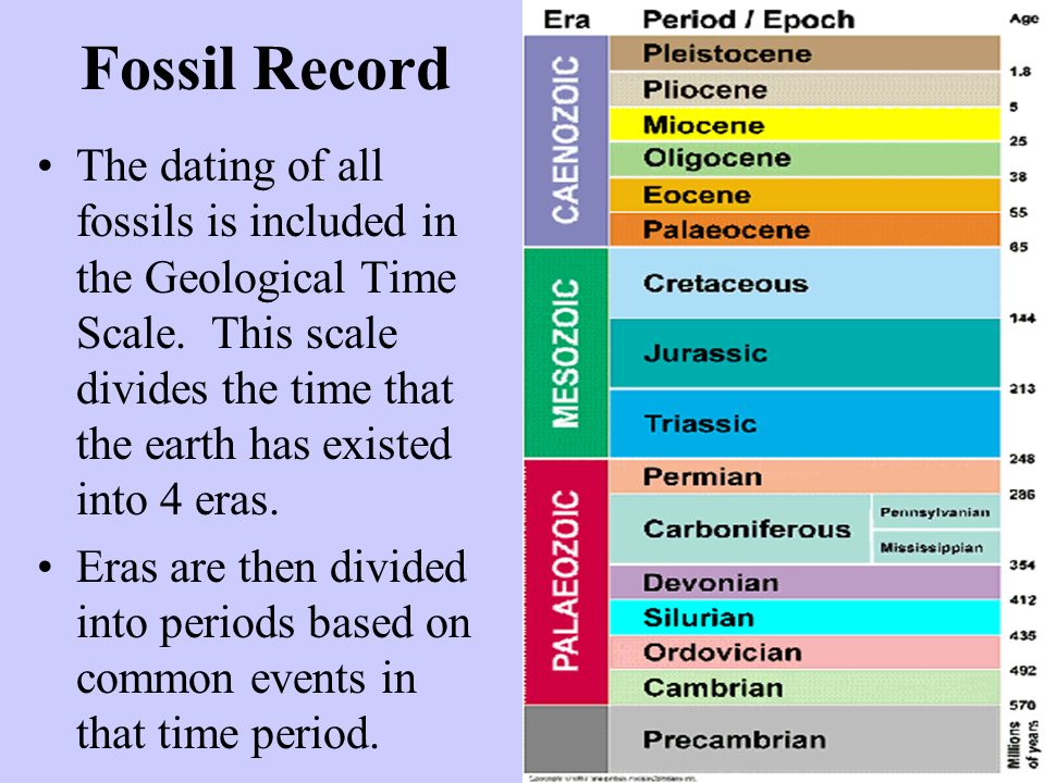 the fossil record worksheet answers