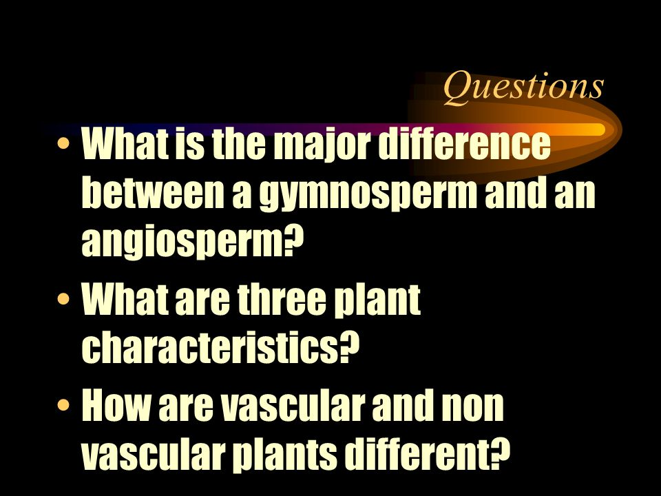 Questions What is the major difference between a gymnosperm and an angiosperm What are three plant characteristics