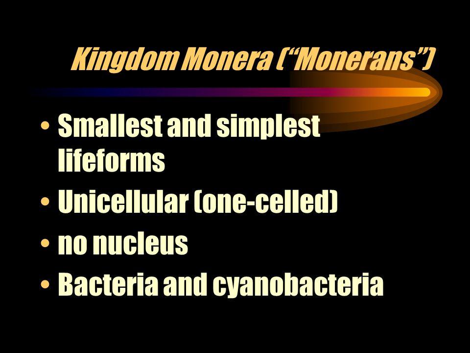 Kingdom Monera ( Monerans )