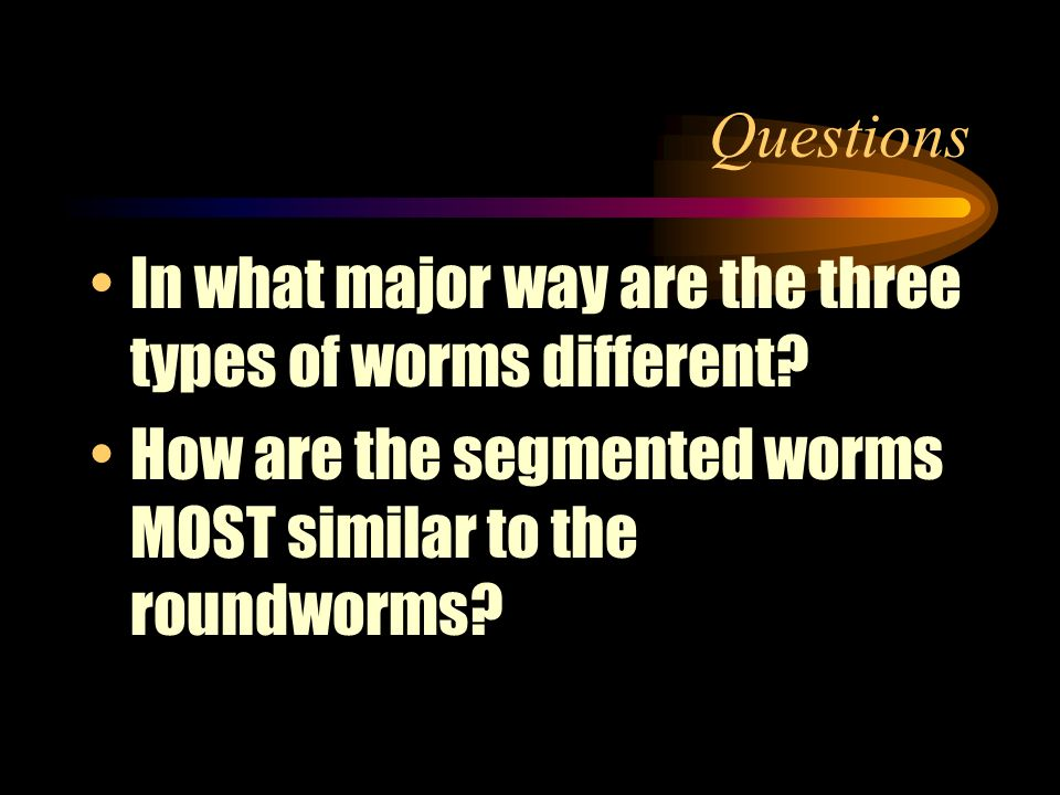 Questions In what major way are the three types of worms different.