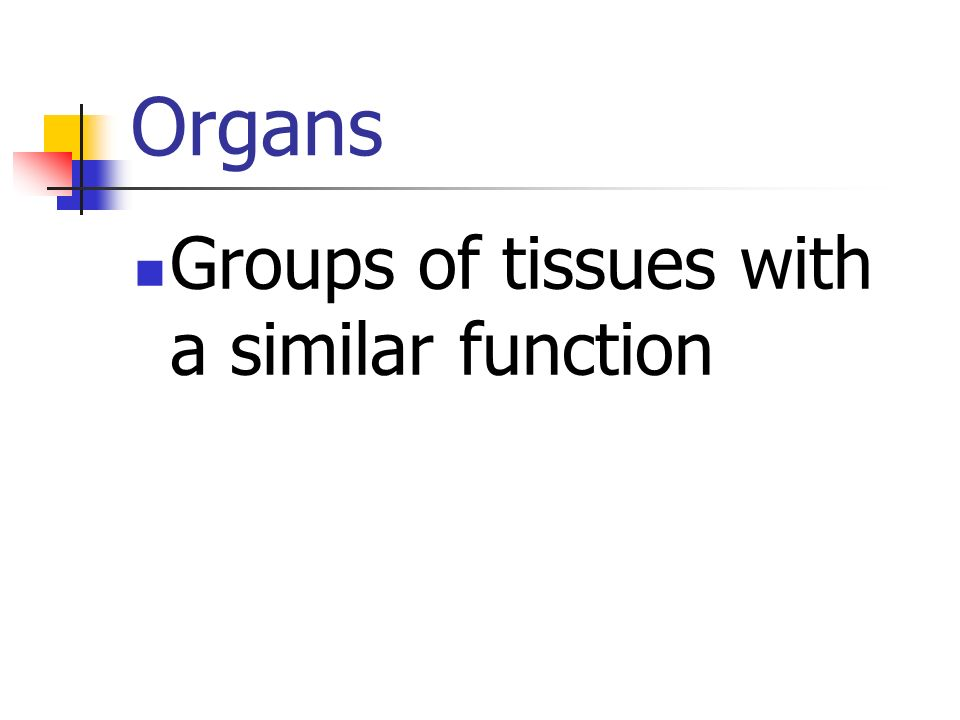 Organs Groups of tissues with a similar function