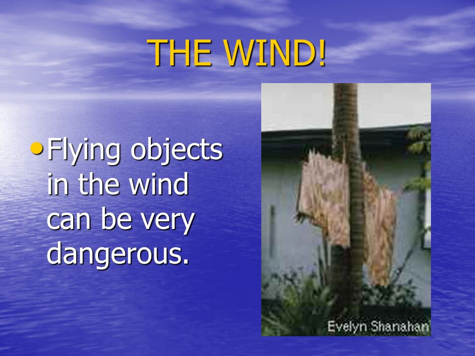 THE WIND! Flying objects in the wind can be very dangerous.