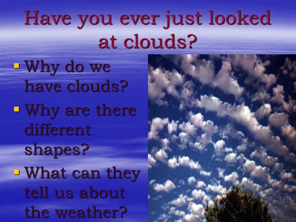Have you ever just looked at clouds