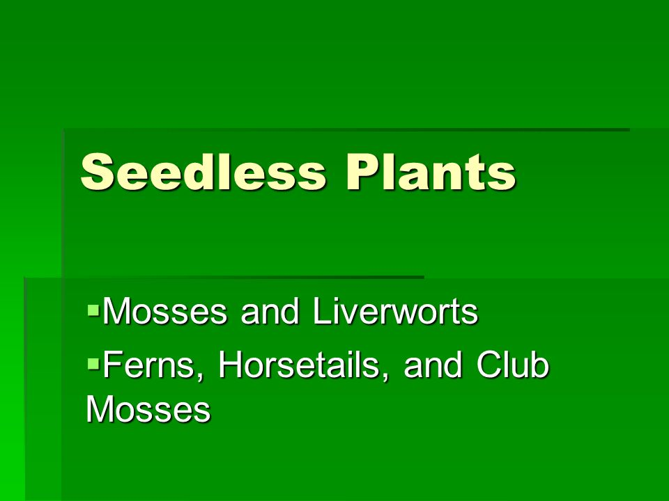Mosses and Liverworts Ferns, Horsetails, and Club Mosses