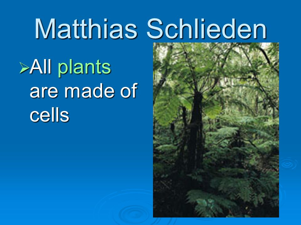 Matthias Schlieden All plants are made of cells