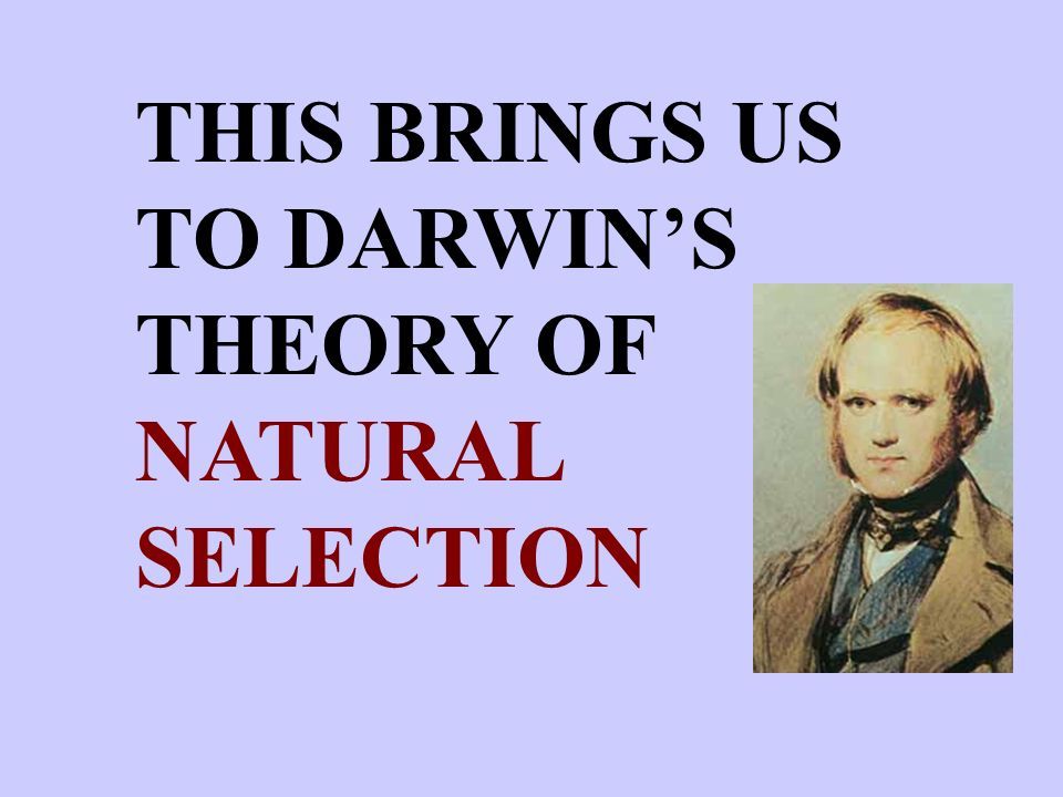 THIS BRINGS US TO DARWIN'S THEORY OF NATURAL SELECTION