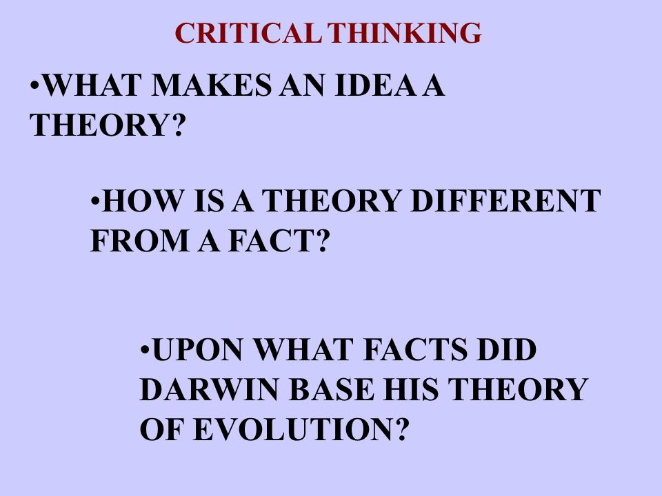 WHAT MAKES AN IDEA A THEORY