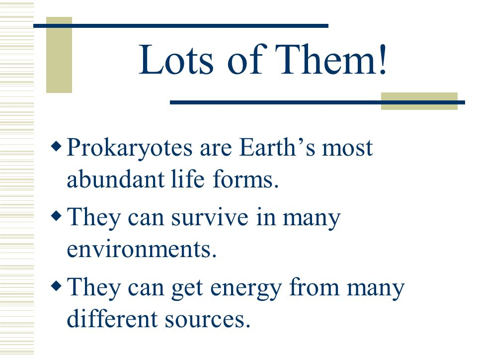 Lots of Them! Prokaryotes are Earth's most abundant life forms.