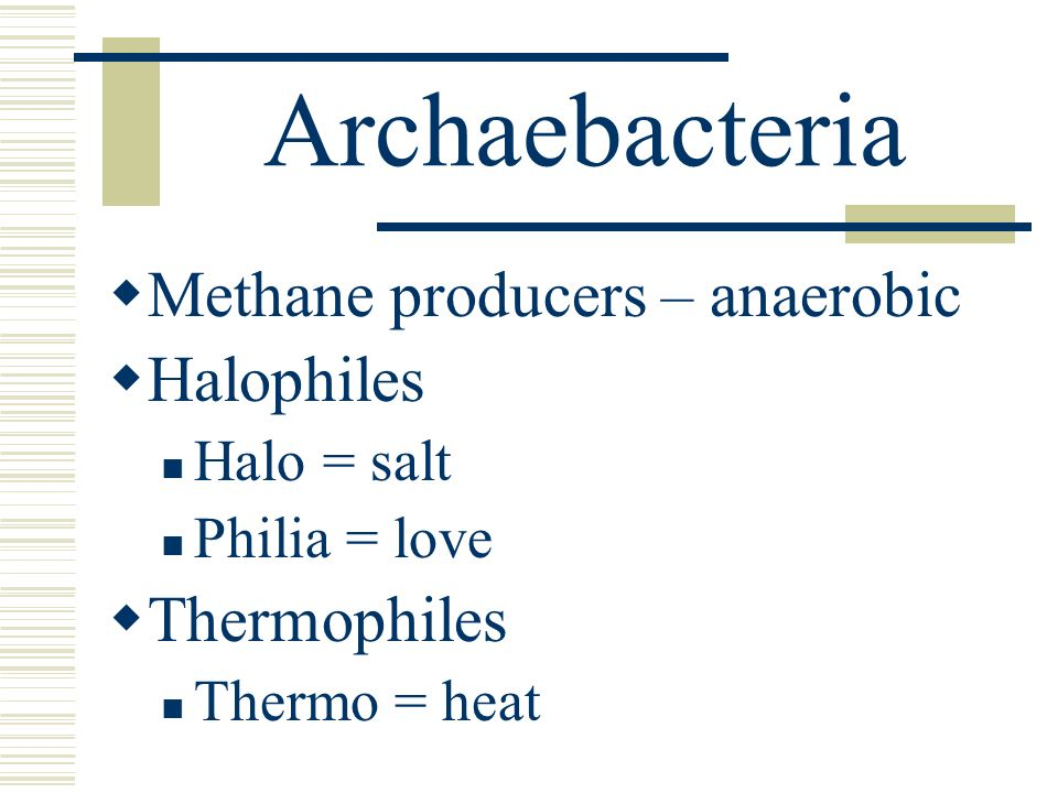 Archaebacteria Methane producers – anaerobic Halophiles Thermophiles