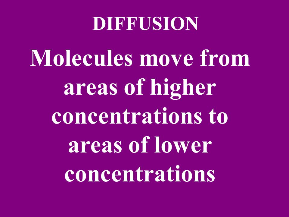 DIFFUSION Molecules move from areas of higher concentrations to areas of lower concentrations