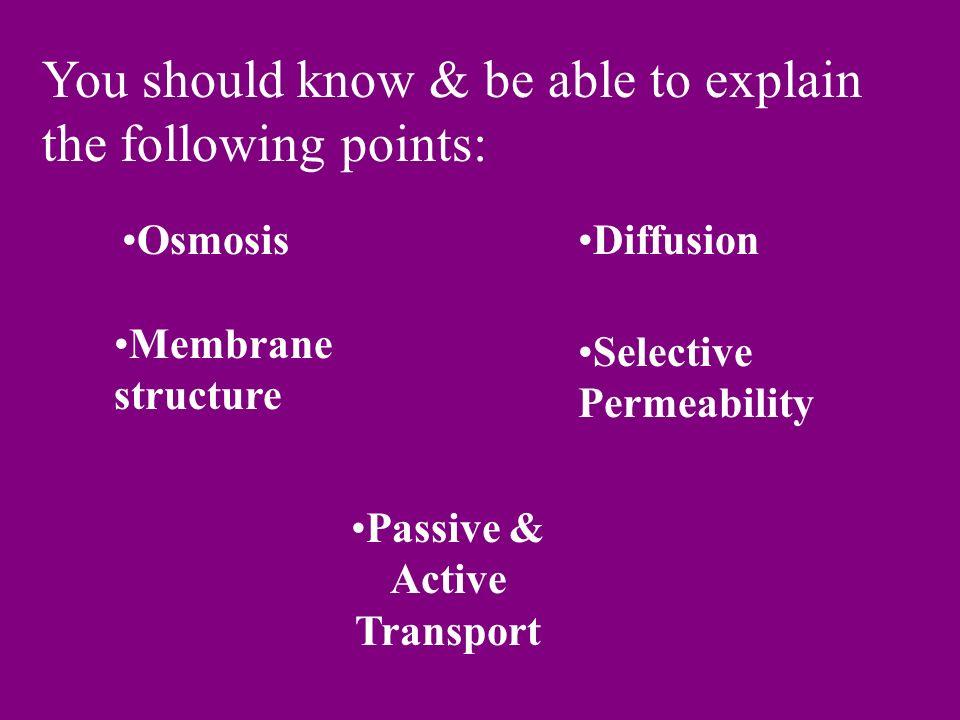 Passive & Active Transport