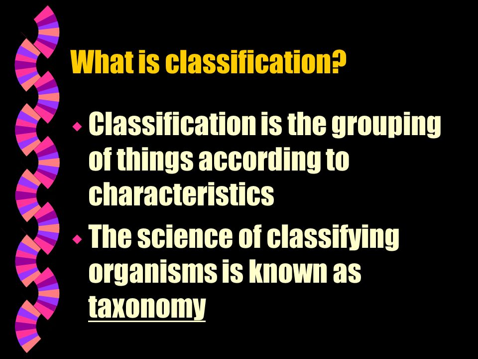 What is classification