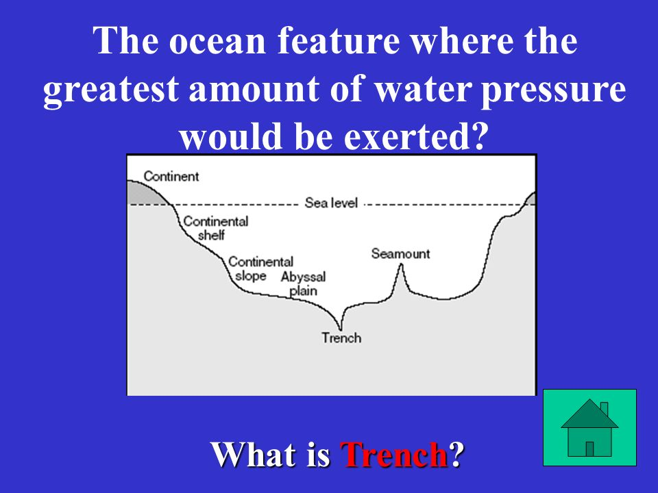The ocean feature where the greatest amount of water pressure would be exerted
