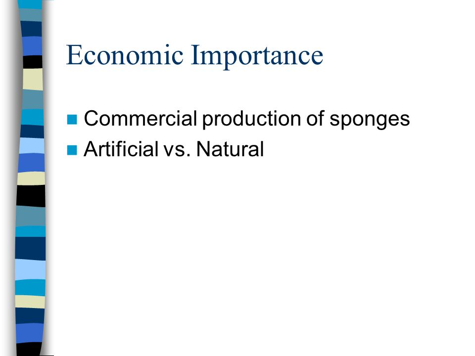 Economic Importance Commercial production of sponges