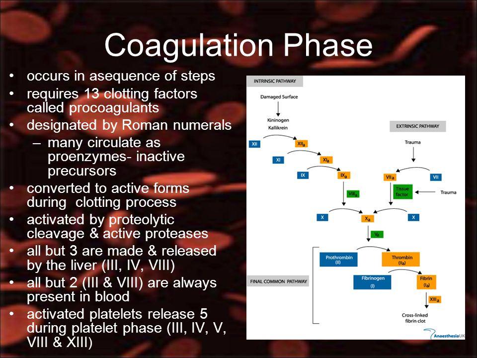 13 blood clotting factors pdf